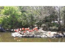 東山動植物園!